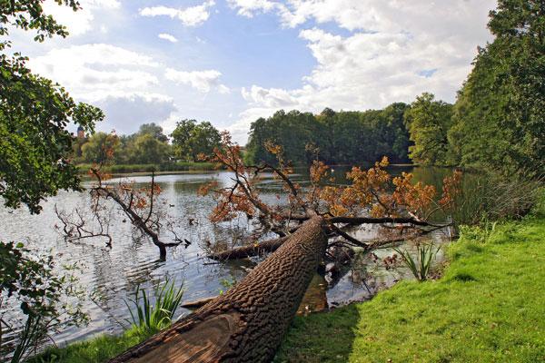 Herbst am Teich in Machern