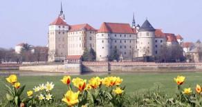 Frühling auf Schloss Hartenfels